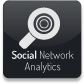 Social Networks Analytics